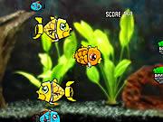 Robotachtige Vis