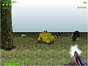 Turkey Shootout 3D