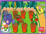 Jardim mágico de Dora