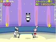 Circo de la panda