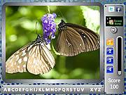 Бабочка - НайтиАлфавиты